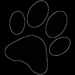 Sassy unikatne pletenine logo