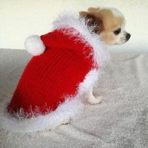 Pasji pulover božiček